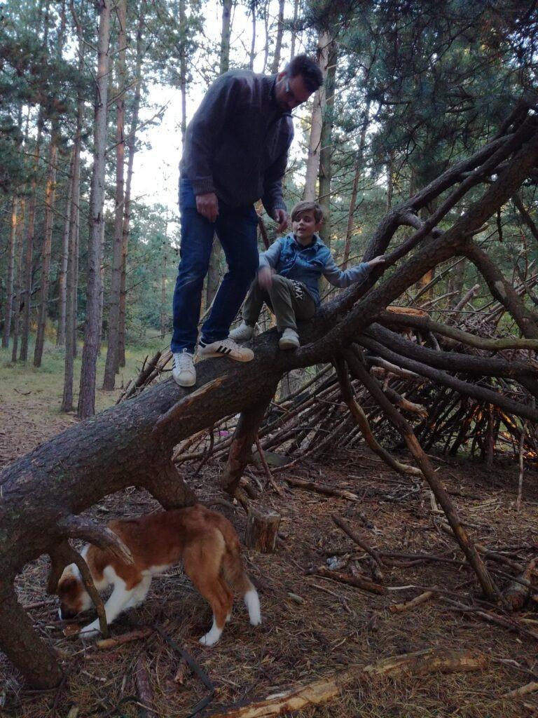 Friluftlivsliv i skoven 2018 outdoorpassion