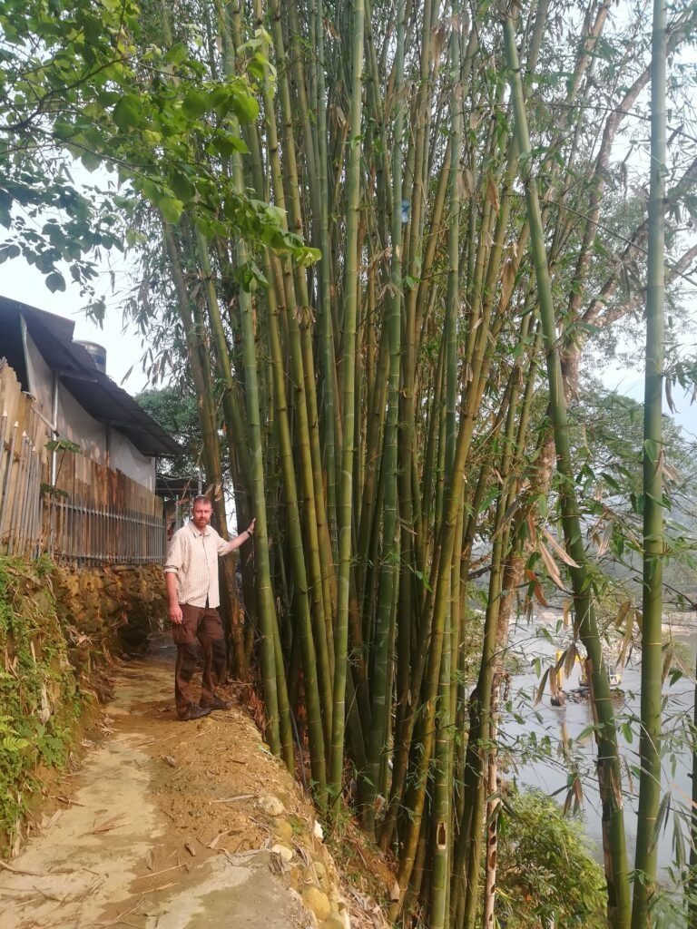 Bambus-Bushcraft-Vietnam-Outdoorpassion.jpg