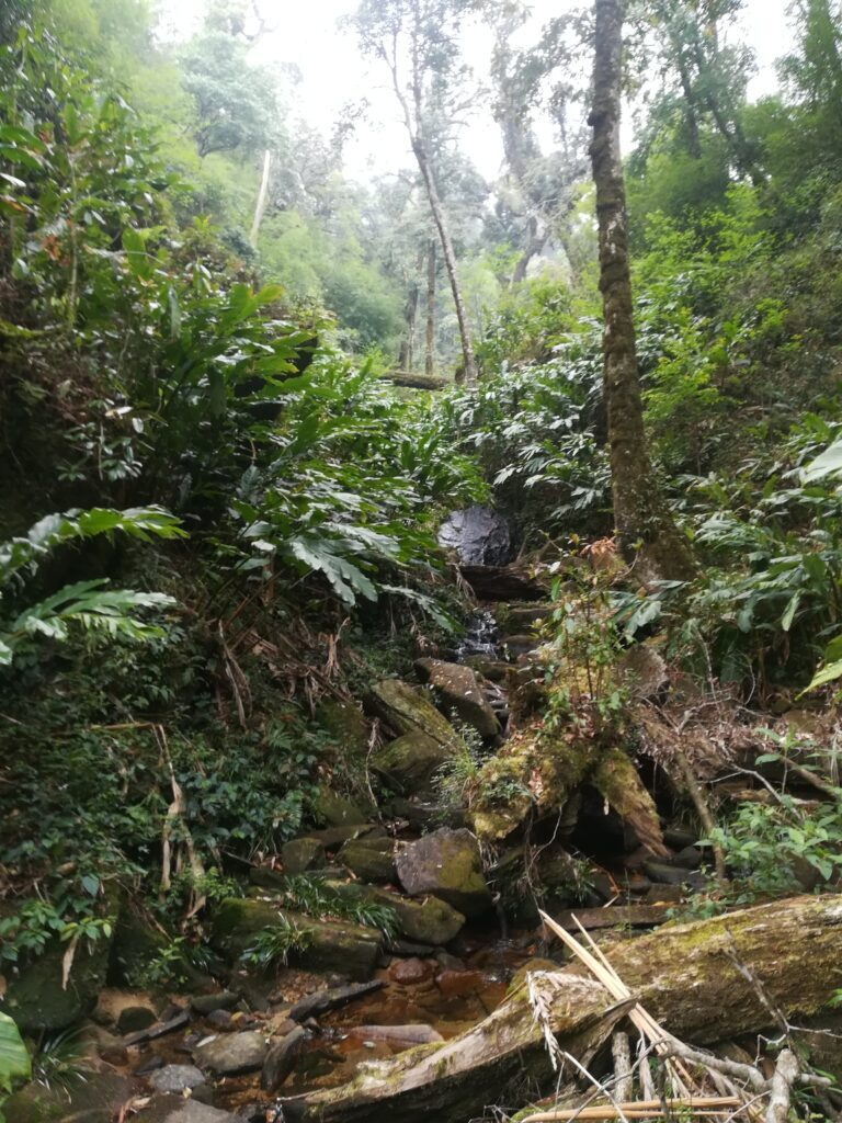 Trekking-Sapa-Outdoorpassion3.jpeg