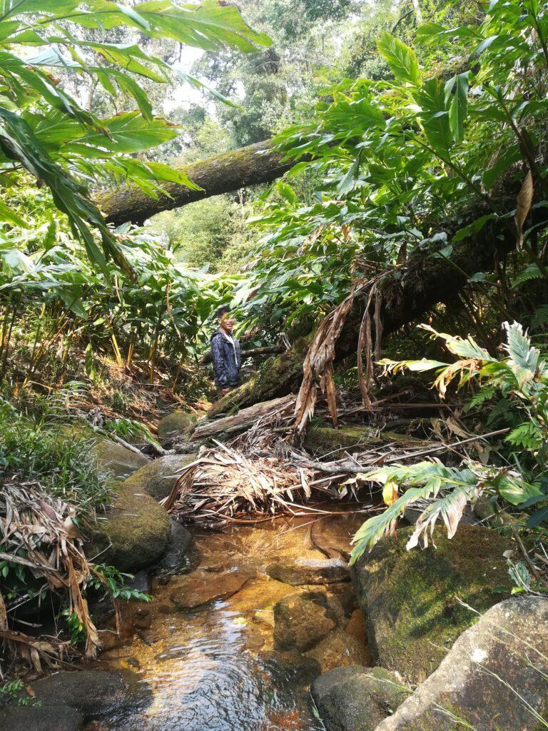 Trekking-Sapa-Outdoorpassion5.jpeg